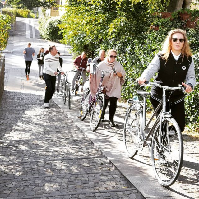Diversity of Copenhagen bike tour